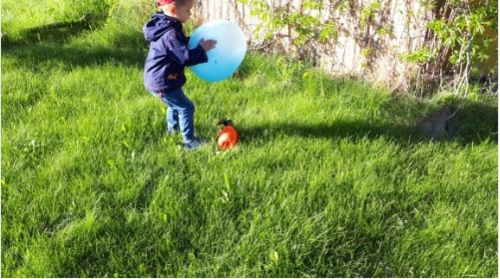SuperBall™ - Inflatable Amazing Bubble Ball photo review